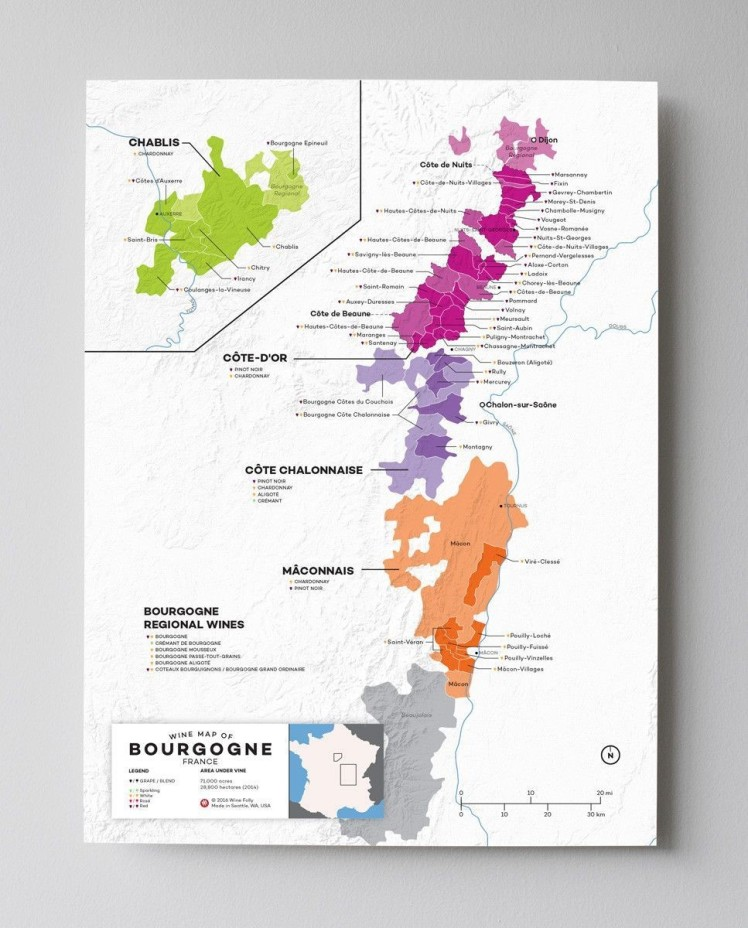 Bourgogne Wine Map